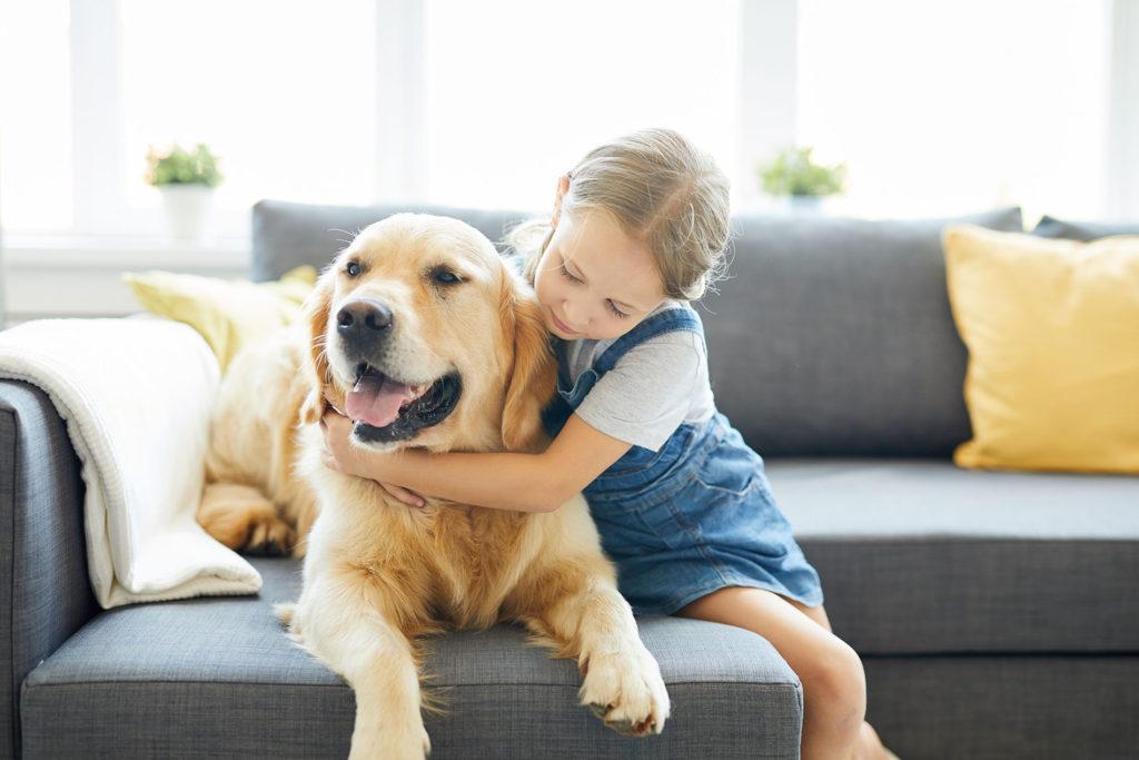 seguros-en-denia-mascotas